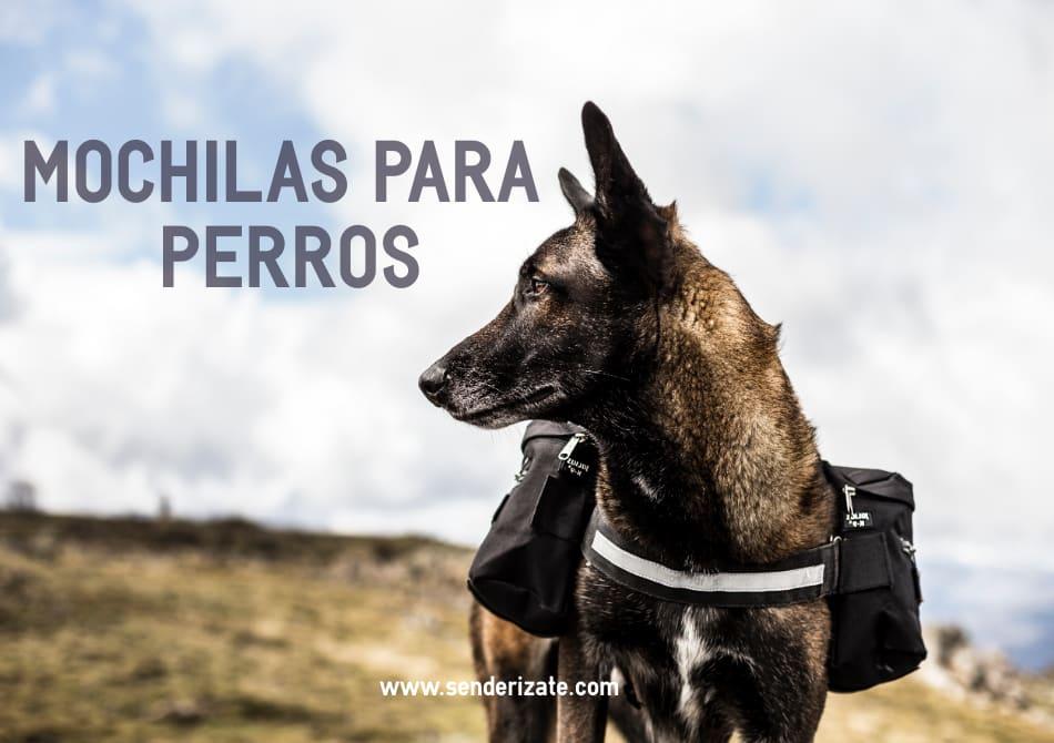 mejores mochilas perros montaña